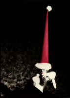 http://markhigashino.com/files/gimgs/th-6_6_050-xmas-card-w-red-hat.jpg
